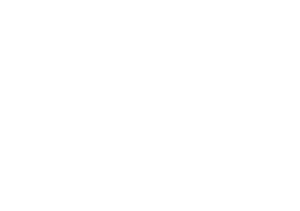 Michelle Varney Bridal and Makeup Logo