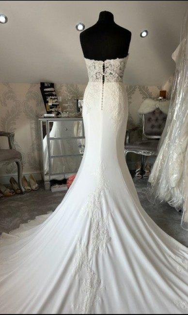 Pronovias Ivory Size 12 Back